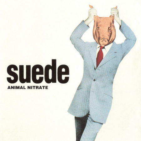 stingray-blog-suede.png